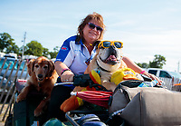 Aug 18, 2019; Brainerd, MN, USA; A Racers for Christ (RFC) chaplain with her dogs during the NHRA Lucas Oil Nationals at Brainerd International Raceway. Mandatory Credit: Mark J. Rebilas-USA TODAY Sports