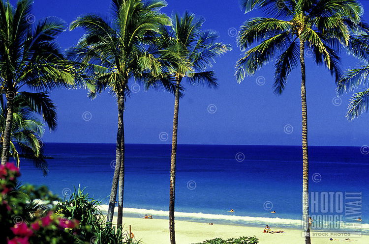A gorgeous day at Hapuna Beach on the Big Island of Hawaii, with a brilliant blue ocean, clear sky, palm trees and a few tourists relaxing on the white sand beach.