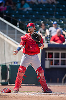 Springfield Cardinals catcher Brian O'Keefe (23) hands a ball back to the umpire on May 19, 2019, at Arvest Ballpark in Springdale, Arkansas. (Jason Ivester/Four Seam Images)