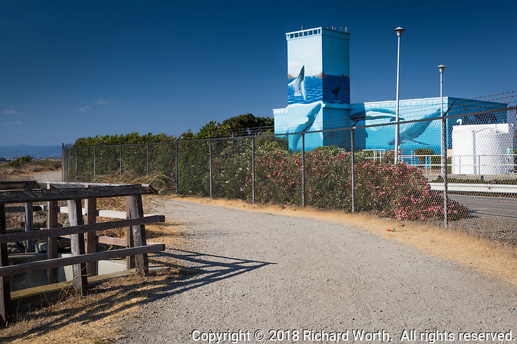 The Bay Trail snakes past the waste water treatment plant adorned with whales, thanks to artist Greenwood.