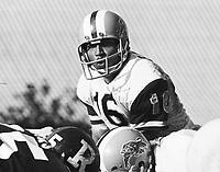 Chuck Ealey Hamilton Tiger Cats quarterback 1972. Copyright photograph Ted Grant