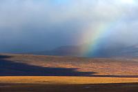 Rainbow in the Kigluaik mountains, Seward Peninsula, Arctic, Alaska.