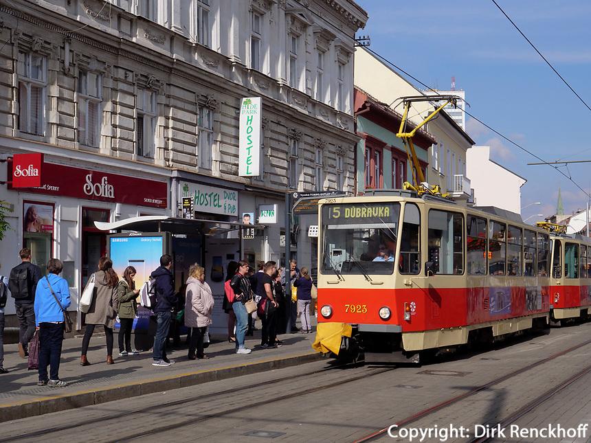 Straßenbahn auf der Obchodna, Bratislava, Bratislavsky kraj, Slowakei, Europa<br /> Tram at Obchodna, Bratislava, Bratislavsky kraj, Slowakia, Europe