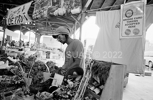 Detroit, Michigan<br /> USA<br /> July 24, 2010<br /> <br /> At Detroit's Saturday Eastern Market fresh food from farms in southeastern Michigan come to sell their produce. William Gardner, who has his own urban farm in Detroit proper with his wife Kelly, sells fresh food at the Grown-in-Detroit food stand. Grown-in-Detroit is a partnership with over 185 organizations and hundreds of individuals that support urban gardening and farming initiatives in Detroit, Hamtramck, and Highland Park..Urban gardening has taken Detroit by storm with so many vacant lots available after thousands of homes have been foreclosed, abandoned and demolished many residents and neighborhoods have turned those plots in to productive land.