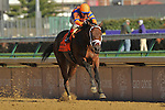 November 6, 2010: Uncle Mo, ridden by John Velazquez and trained by Todd A. Pletcher cruises to victory in the Grey Goose Breeders Cup Juvenile at Churchill Downs in Louisville, KY.