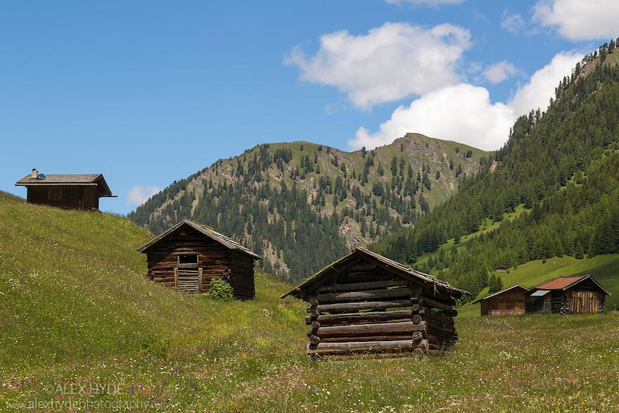 Hay barns in alpine meadow. Nordtirol, Austrian Alps, Austria, July.