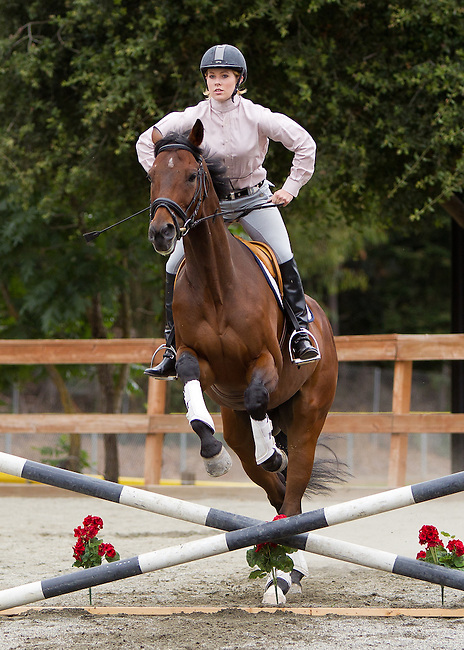 LAHHA Schooling Show at the Los Altos Hills Town Arena on July 17, 2011.
