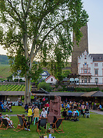 Brömserburg und Boosenburg, Rüdesheim, Hessen, Deutschland, Europa<br /> castle Brömserburg and Boosenburg, Rüdesheim, Hesse, Germany, Europe