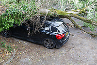 2018 06 15 Mercedes car damaged by falling tree, Cardiff, Wales, UK