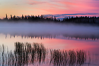 Morning fog at sunrise over Willow lake, southcentral, Alaska.
