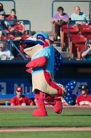 Spokane Indians mascot Ribby the Redband Trout during a Northwest League game against the Vancouver Canadians at Avista Stadium on September 2, 2018 in Spokane, Washington. The Spokane Indians defeated the Vancouver Canadians by a score of 3-1. (Zachary Lucy/Four Seam Images)