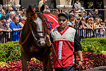 DEL MAR, CA  AUGUST 11: #1 Instagrand, ridden by Drayden Van Dyke, in the paddock before the Best Pal Stakes (Grade ll) on August 11, 2018, at Del Mar Thoroughbred Club in Del Mar, CA. (Photo by Casey Phillips/Eclipse Sportswire/Getty Images