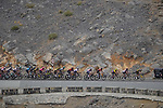 The peloton climb Jais Mountain during Stage 5 of the 2021 UAE Tour running 170km from Fujairah to Jebel Jais, Ras Al Khaimah, UAE. 25th February 2021.  <br /> Picture: Eoin Clarke   Cyclefile<br /> <br /> All photos usage must carry mandatory copyright credit (© Cyclefile   Eoin Clarke)