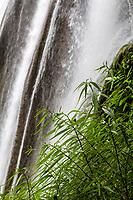 Guizhou Province, China.  Yellow Fruit Tree (Huangguoshu) Waterfall and Vegetation.