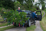 Fownhope Heart of Oak Society Herefordshire 2018.  Club Walk Day. Established as a Friendly Society in 1876 and reformed in 1989 when the law was changed regarding Friendly Societies.<br /> <br /> Mike Andrews (President with chain saw, he had been a member for over 50 years and Geoff Hardwick. An oak bough is cut at dawn on Club Walk Day, trimmed and decorated with red, white and blue ribbons and then transported to Mike's home in the centre of Fownhope.