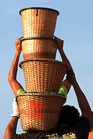 O pequeno fruto de açaí (Euterpe oleracea) movimenta a economia das populações ribeirinhas no Pará. Diariamente  dezenas de barcos chegam trazendo os frutos colhidos por moradores na região das ilhas e é comercializado no porto, onde carregadores levam o açaí dos barcos até caminhões que irão beneficiar o fruto para diversos usos na culinária local e exportação.Abaetetuba, Pará, BrasilFoto Paulo Santos/Interfoto26/09/2008