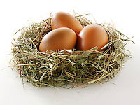 Fresh Burford Brown free range organic Eggs