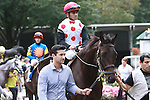 Favorite Brilliant Speed with Javier Casellano came in 3rd in the 54th running of the Grade 2 Bowling Green Handicap for 3-year olds going 1 1/4 mile on the turf.