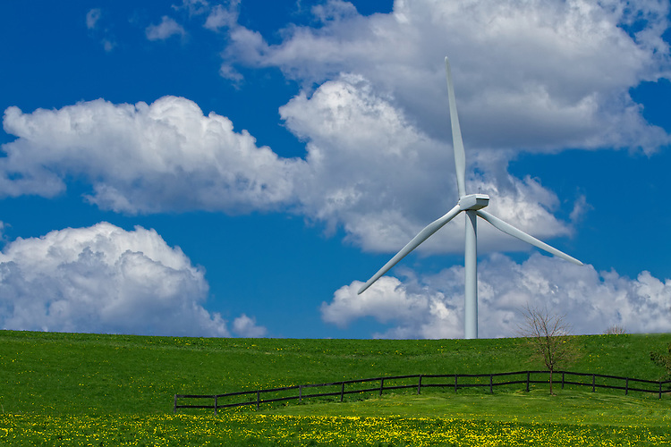Wind Farm in Somerset
