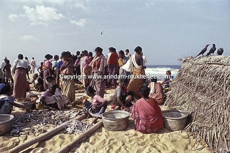 A local fish market on Chowra beach - Kovala, Trivandrum, Kerala, India.