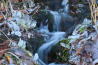 Cool winter water flowing down a creek in Montana. Clumps of icicles cling to the grass and moss.