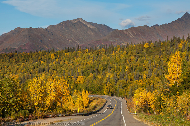Autumn foliage along the George Parks highway, Interior, Alaska.