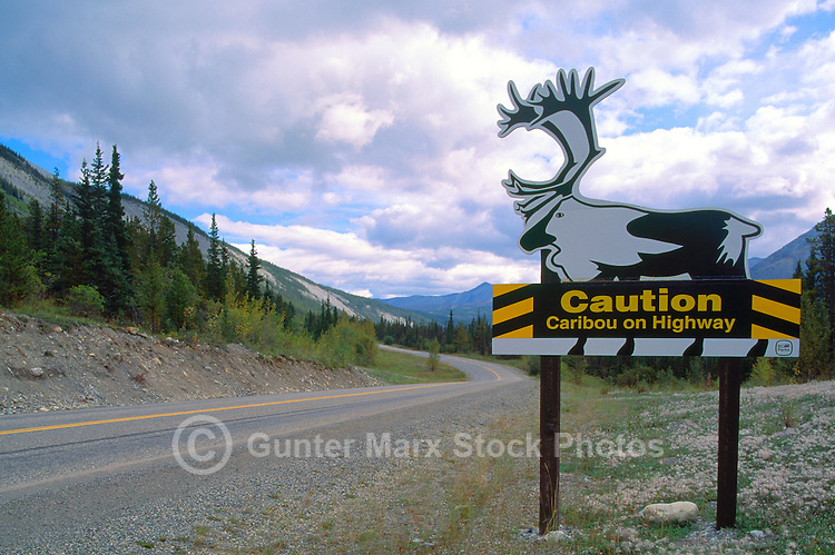 Alaska Highway, Northern Rockies, BC, British Columbia, Canada - Warning Caution Road Sign for Woodland Caribou (Rangifer tarandus) Animal Crossing, Summer