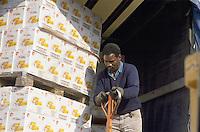 - Meda (Milan), the warehouse of Food Bank foundation: collects food donated by food companies and distribute them to charities<br /> <br /> - Meda (Milano), magazzino della fondazione Banco Alimentare: raccoglie i viveri donati dalle aziende alimentari e li redistribuisce alle organizzazioni benefiche