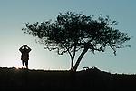 Pisteur en quête de rhinocéros. Damaraland. Namibie. Afrique.Namibia; Africa