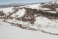 Aerial of Mike Williams Jr. as he begins the uphill climb into the Blueberry Hills between Unalakleet and Shaktoolik during the 2010 Iditarod
