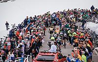 race leaders coming up the Passo dello Stelvio (alt: 2758m) through the snow<br /> <br /> Stage 16: Rovett › Bormio (222km)<br /> 100th Giro d'Italia 2017