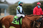 January 23, 2021: Our Super Freak (12) with jockey David Cohen aboard before the running of the Pippin Stakes at Oaklawn Racing Casino Resort in Hot Springs, Arkansas. ©Justin Manning/Eclipse Sportswire/CSM