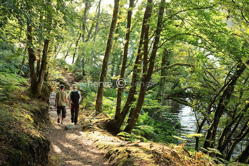 France, Morbihan (56), Saint-Aignan, lac de Guerlédan, sentier de  grande randonnée GR341 au niveau de l'anse de Sordan // France, Morbihan, St. Aignan, lake of Guerledan, GR341 hiking trail at the cove Sordan