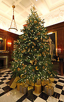 The Savoy Hotel has reopened and launched a new christmas charity initiative - 'Festive Wishes'. <br />