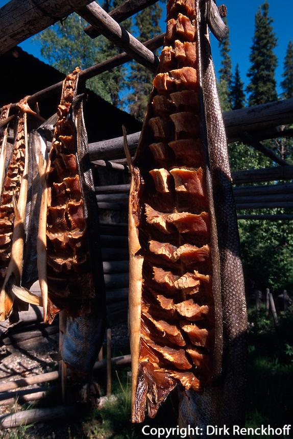 USA, Alaska, Räuchern von Lachs im Chena Indian Village bei Fairbanks