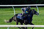 October 31, 2020: After Five, trained by trainer Wesley A. Ward, exercises in preparation for the Breeders' Cup Juvenile Turf at Keeneland Racetrack in Lexington, Kentucky on October 31, 2020. Scott Serio/Eclipse Sportswire/Breeders Cup/CSM