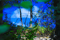 White clouds reflecting on the blue waters framed by green at Murphy Lake Montana