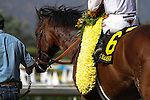"""June 28, 2014: Majestic Harbor with Tyler Baze aboard wins the Grade I """"Win and You're In"""" Gold Cup at Santa Anita Park in Arcadia, California. Zoe Metz/ESW/CSM"""