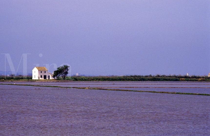 Spain. Levant. Near Valencia. Albufera. Flooded rice fields in lagoon..