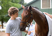 Top-class jumper Dark Equation with trainer Doug Fout's son, Dunn, on the eve of the horse's retirement.