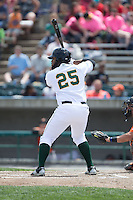 Nellie Rodriguez (25) of the Lynchburg Hillcats at bat against the Frederick Keys at Calvin Falwell Field at Lynchburg City Stadium on May 14, 2015 in Lynchburg, Virginia.  The Hillcats defeated the Keys 6-3.  (Brian Westerholt/Four Seam Images)