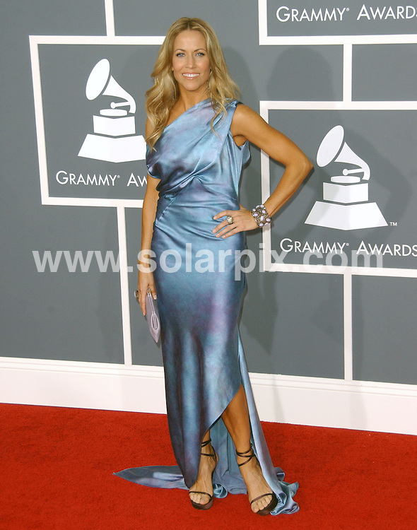 **ALL ROUND PICTURES FROM SOLARPIX.COM**.**SYNDICATION RIGHTS FOR UK, AUSTRALIA, DENMARK, PORTUGAL, S. AFRICA, SPAIN & DUBAI (U.A.E) ONLY**.The 51st Annual Grammy Awards Arrivals at the Staples Center  in Los Angeles, CA. USA.This pic:Sheryl Crow..JOB REF:8425     PHZ/Ortega     DATE: 08.02.09.**MUST CREDIT SOLARPIX.COM OR DOUBLE FEE WILL BE CHARGED**.**ONLINE USAGE FEE  GBP 50.00 PER PICTURE - NOTIFICATION OF USAGE TO PHOTO @ SOLARPIX.COM**