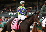 October 13, 2018 : #8 Rushing Fall and jockey Javier Castellano win the 35th running of The Queen Elizabeth II Challenge Cup Grade 1 $500,000 for trainer Chad Brown and owner e Five Racing at Keeneland Race Course on October 13, 2018 in Lexington, KY.  Candice Chavez/ESW/CSM