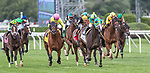July 31, 2021: Cross Border #2, ridden by jockey Luis Saez win the Grade 2 Bowling Green Stakes on the turf at Saratoga Race Course in Saratoga Springs, N.Y. on July 31, 2021. Rob Simmons/Eclipse Sportswire/CSM