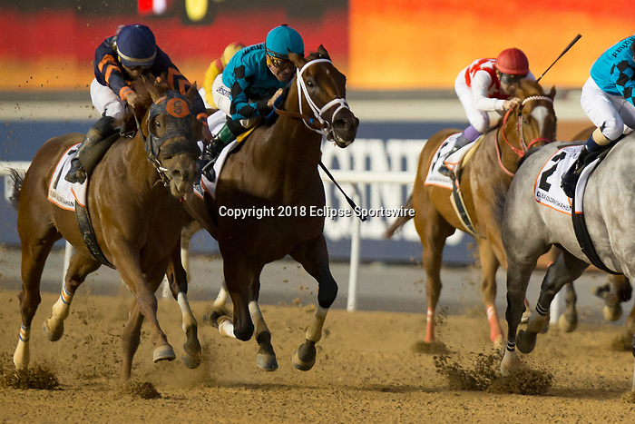 DUBAI,UNITED ARAB EMIRATES-MARCH 31: Mind Yiur Biscuits,ridden by Joel Rosario,wins the Dubai Golden Shaheen at Meydan Racecourse on March 31,2018 in Dubai,United Arab Emirates (Photo by Kaz Ishida/Eclipse Sportswire/Getty Images)