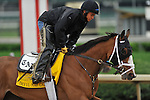 25 April 2010: Devil May Care will be entered in the Kentucky Derby--and not the Kentucky Oaks. John Velazquez will ride her after the defection of Eskendereya from the Derby.