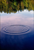 Ripple on still water<br />
