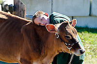 A boy and his heifer at Sandwich Fair, New Hampshire. Photograph by Peter E. Randall