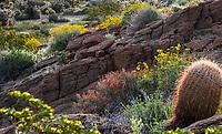 Rock outcrop in Sonoran Desert at Anza Borrego California State Park
