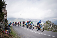 Antonio Pedrero (ESP/Movistar) leading Nairo Quintana (COL/Movistar) & co up the Alto de La Cubilla<br /> <br /> Stage 16: Pravia to Alto de La Cubilla. Lena (144km)<br /> La Vuelta 2019<br /> <br /> ©kramon